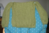 Ariann_sleeves_attached