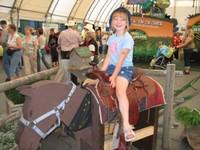 C_on_horse